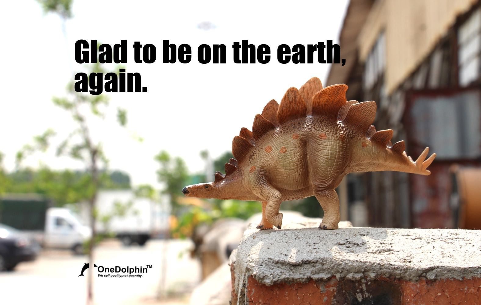 Stegosaurus: glad to be on the earth,again