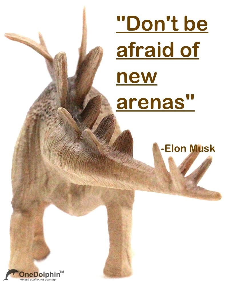 Stegosaurus: don't be afraid of new arenas.