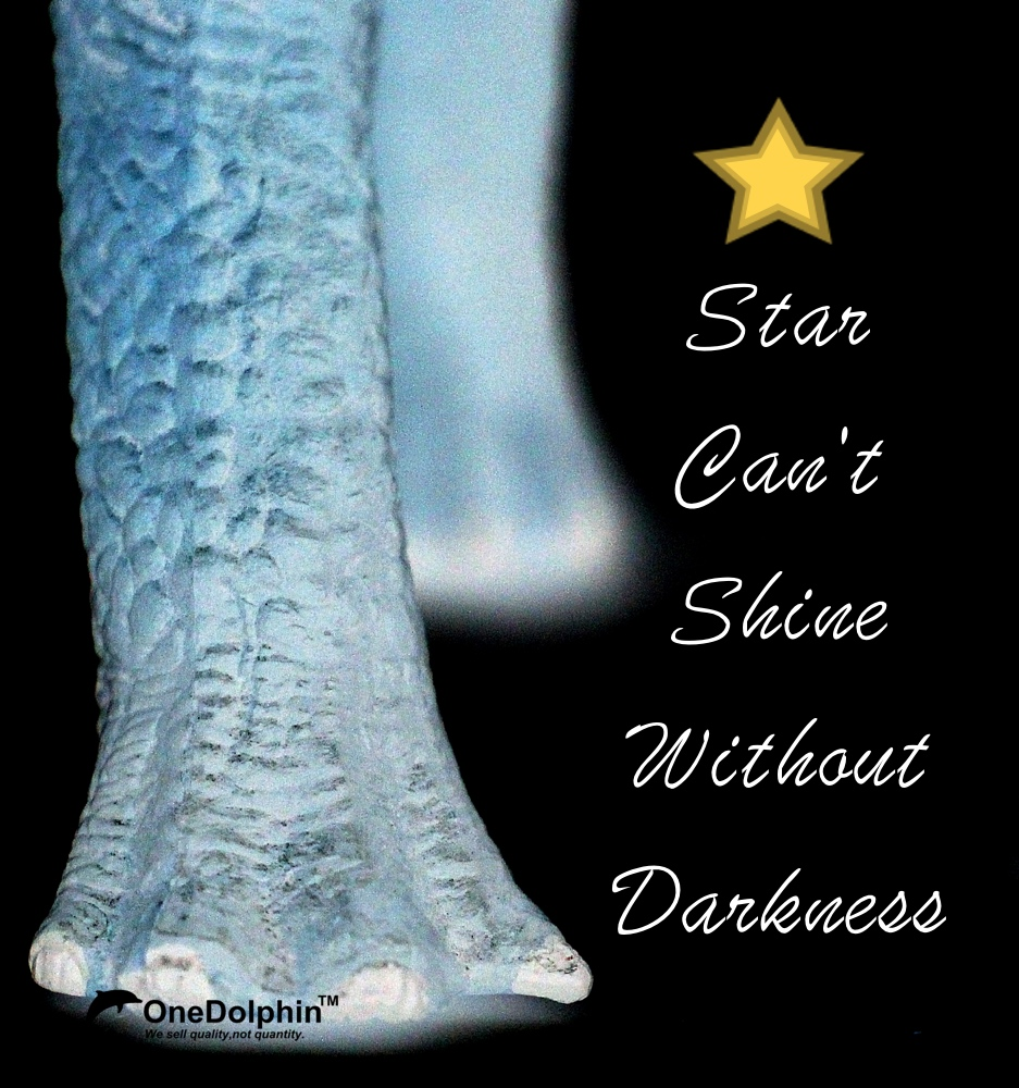 Brachiosaurus: Star Can't Shine Without Darkness