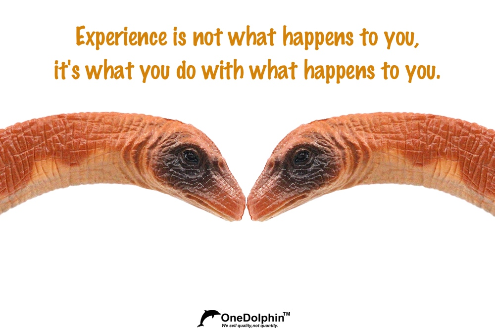 Apatosaurus: Experience is not what happens to you, it's what you do with what happens to you.