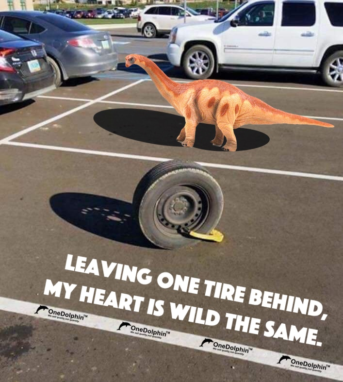 Apatosaurus: leaving one tire behind, my heart is as wild as the same