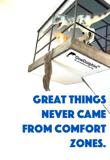 Carnosaurus: GREAT THINGS NEVER CAME FROM COMFORT ZONES.
