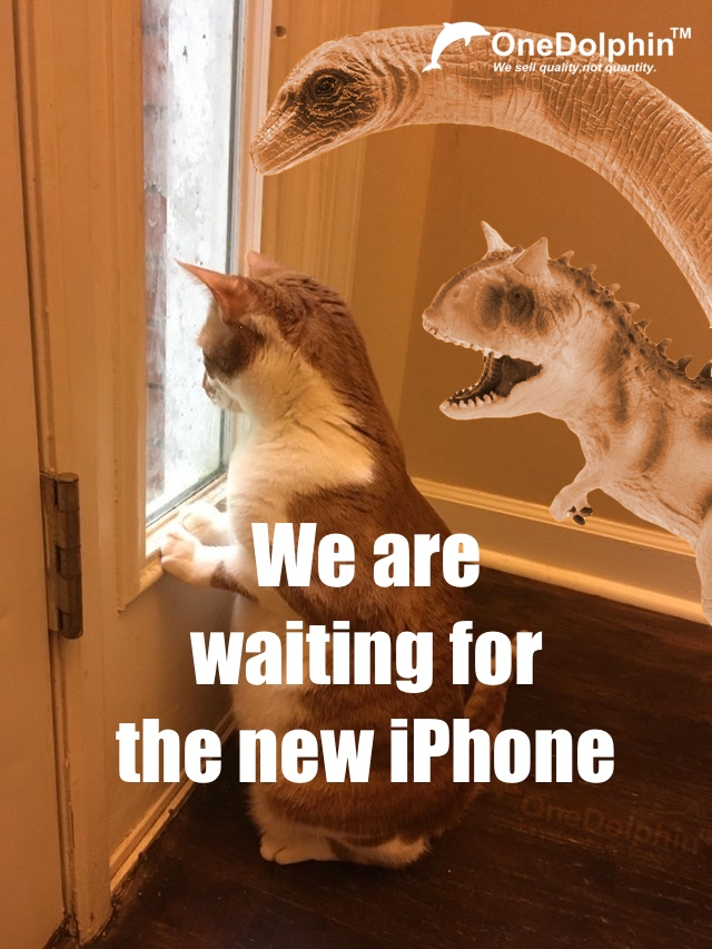 We are waiting for the new iPhone...