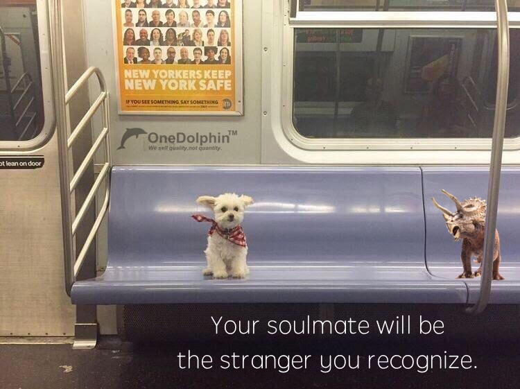 Triceratops: Your soulmate will be the stranger you recognize.
