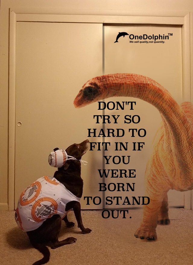 DON'T TRY SO HARD TO FIT IN IF YOU WERE BORN TO STAND OUT.