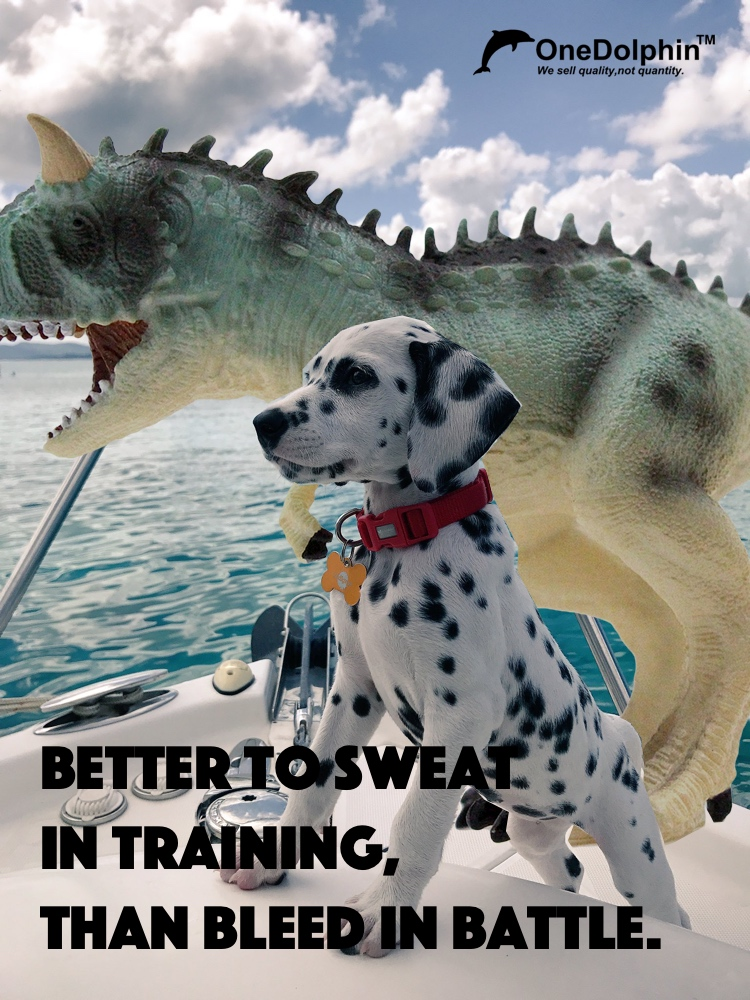 Carnotaurus: better to sweat in training, than bleed in battle.