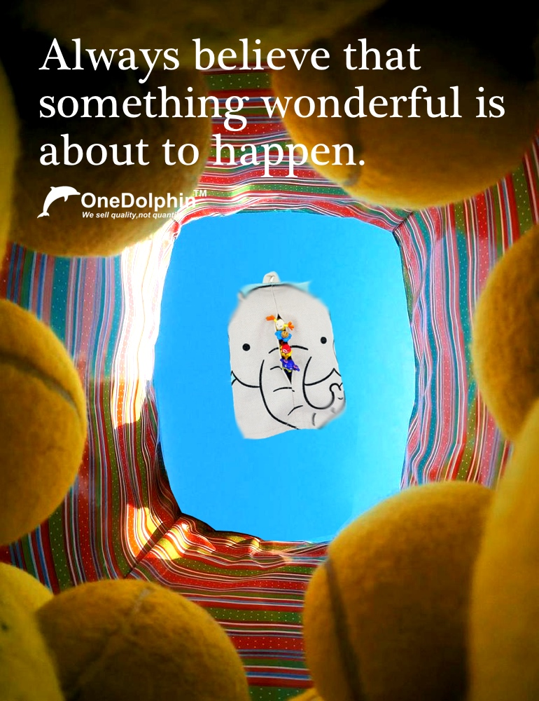 OneDolphin Figures: Always believe that something wonderful is about to happen.