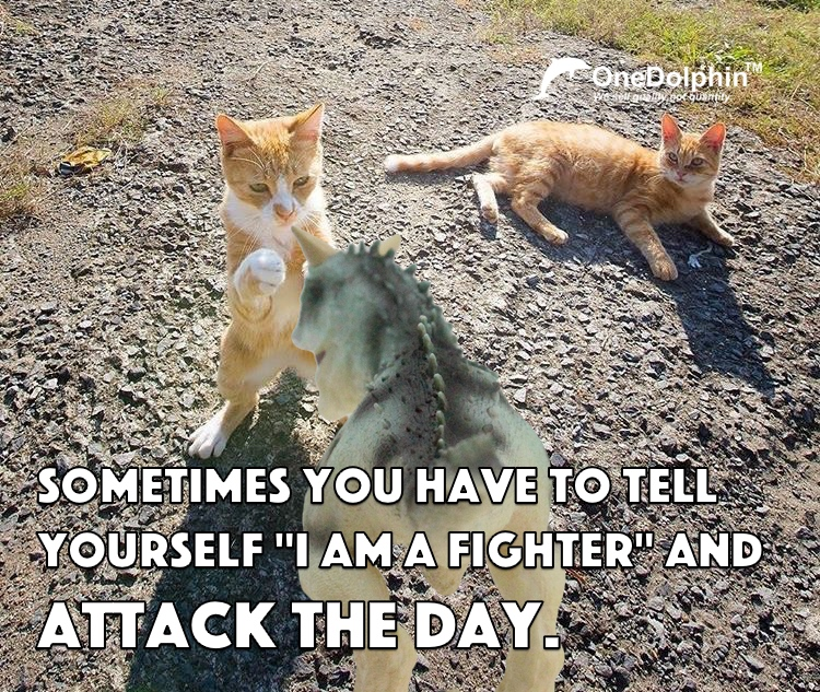 """Carnotaurus: SOMETIMES YOU HAVE TO TELL YOURSELF """"I AM A FIGHTER"""" AND ATTACK THE DAY."""