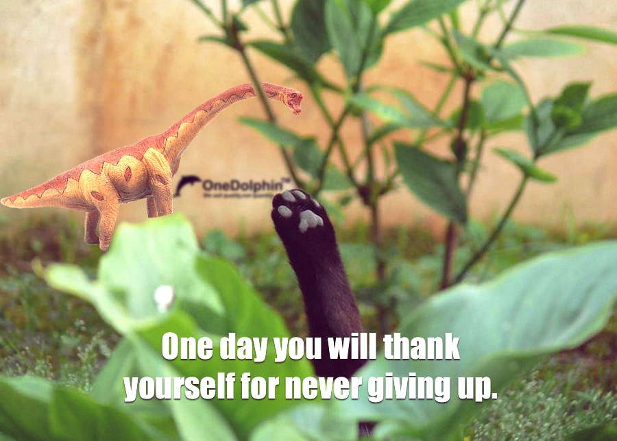 Brachiosaurus: One day you will thank yourself for never giving up.
