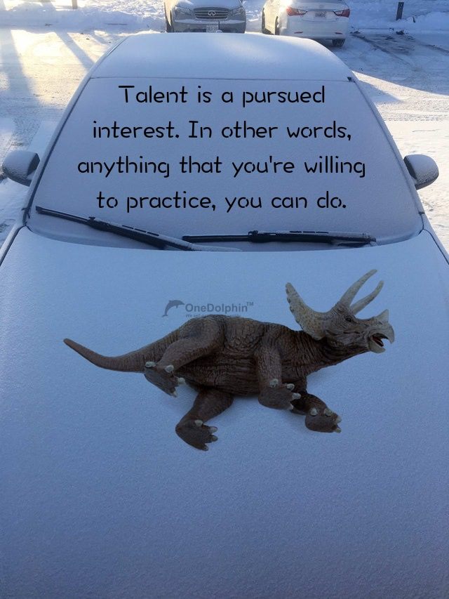 Triceratops: talent is a pursued interest